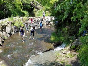 白川水源から流れる小川のせせらぎ