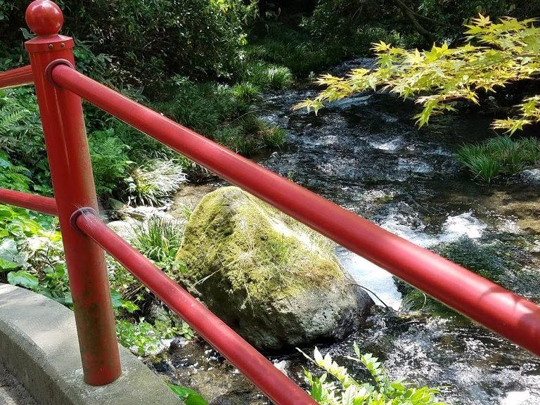 白川水源へ至る小路脇の小川